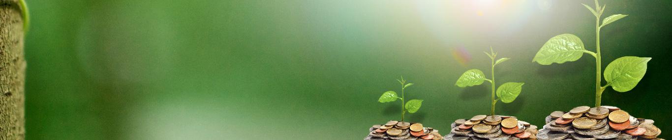 Minna Padi Aset Manajemen - Kahuripan Pendapatan Tetap
